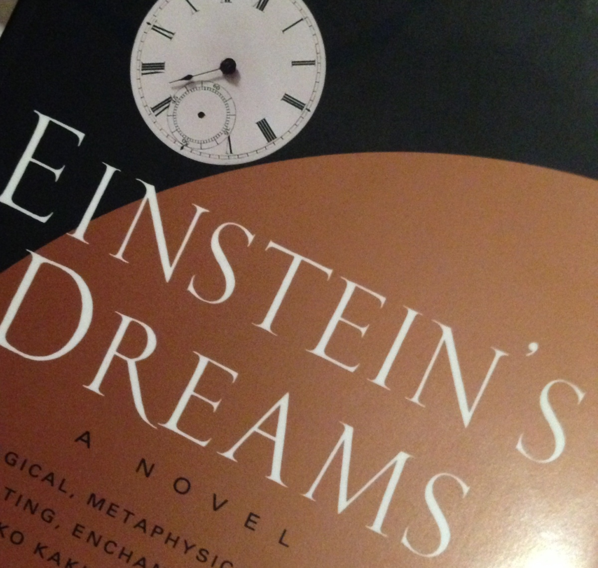 Einstein's Dreams: An Overdue Review
