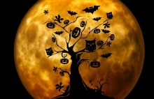 halloween-959048_960_720