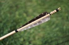 arrow-1557473_960_720